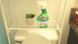How to remove bad odors from your toilet with bleach