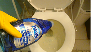 Clean and removing bad odors from your toilet from your toilet with Dawn dish soap