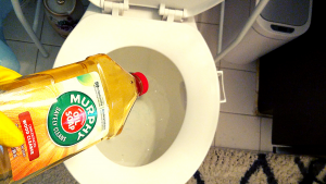 CLEANING A TOILET WITH MURPHY'S OIL SOAP